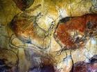 Malba v jeskyni Altamira na území dnešního Španělska, kde probíhaly práce. Podle autorů výzkumu nebyly tyto jeskyně využívány jako obytné prostory - naši předkové je navštěvovali s uměleckými cíli.