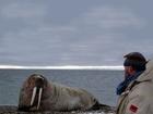 Badatel Hauke Trinks, který strávil 13 měsíců na Krajním Severu a zkoumal tam vlastnosti ledovce