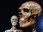Homo neanderthalensis, někdy Homo sapiens neanderthalensis nebo Neandrtálec je předvěká forma člověka. Jeho ostatky byly vůbec prvními prozkoumanými se zveřejněnými výsledky.