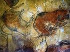 Lascaux je jeskynní komplex v jihozápadní Francii proslavený díky jeskynním malbám. V jeskyních se nacházejí malby z doby mladšího paleolitu datované mezi roky 13 000 až 15 000 př.n.l. Na malbách se nacházejí především realistické obrázky zvířat.