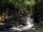 Tropický deštný les, též tropický deštný prales, je zalesněný biom s trvale teplým a vlhkým podnebím. Podmínkou je, aby klima bylo vlhké skutečně celoročně. Nejrozsáhlejší je Amazonský deštný prales, dále Konžský deštný prales a pralesy na poloostrovech Přední a Zadní Indie. Krom nich ještě existují menší ostrovní pralesy v Karibiku, Indickém oceánu a rovníkové oblasti Pacifiku.