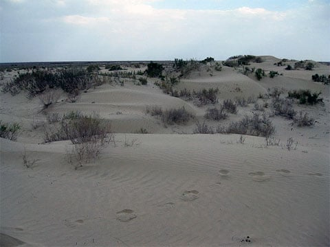 Aralské moře ustoupilo o desítky kilometrů, přišla poušť