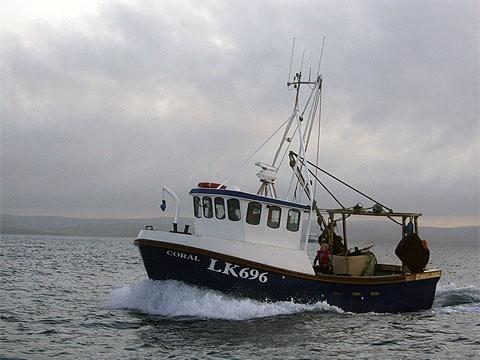Dvouletá studie, která rozdělila světový oceán na 10 hlavních mořských ekosystémů, u poloviny znich zjistila, že snaha omezit přespřílišné rybaření se zdá být úspěšná a vědci tak u nich zaznamenali opravdové zlepšení.