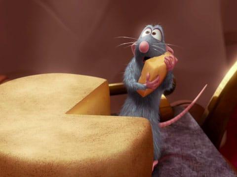 U krys byl pozorován altruismus