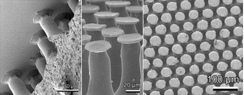 Povrch materiálu, který vytvořili vědci, z různých úhlů pohledu (látka: polyvinylsiloxan)
