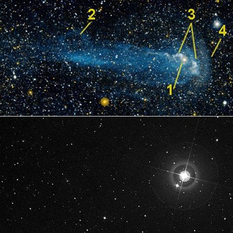 Pro srovnání Mira a její okolí v ultrafialovém světle (navrchu) a v optickém pásmu (dole). 1 – samotná Mira, 2 – smyčka, vytvořená v turbolenci ocasu, 3 – dva tproudy plynu, které vycházejí z hvězdy, astronomové je teprve budou zloumat, ale už je předpoklad, že vybuchují na pólech, 4 – tlaková vlna, která vzniká na  linii srážky vrstev hvězdy a mezihvězdních látek.