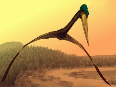 Ptakoještěři (Pterosauři - okřídlení ještěři) jsou vyhynulí druhohorní plazi, první obratlovci v historii Země, kteří možna byli schopní aktivního letu. Žili stejně jako jim fylogeneticky příbuzní dinosauři od svrchního triasu (před 228 miliony let) až do konce křídy před 65 miliony let. Jejich křídla byla tvořena kožovitou blánou napjatou mezi tělem a prodlouženým čtvrtým prstem.