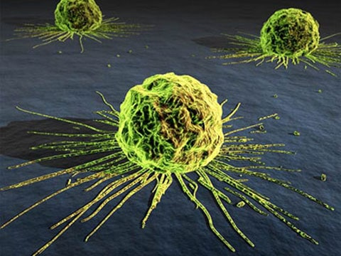 Byl vynalezen gen blokující rakovinu