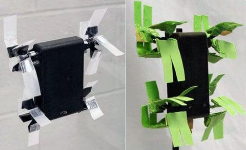 """Robot  Mini-Whegs 7 na vertikální skleněné stěně: na """"nohách"""" s obyčejnou kancelářskou lepící páskou (vlevo), na končetinách z polymeru s mikrostrukturou (vpravo). Váha Mini-Whegs je 120 gramů."""