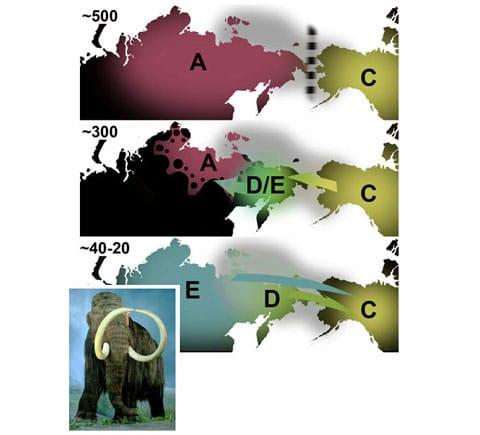 Schéma rozšíření mamutů, vysvětlivky jsou v textu