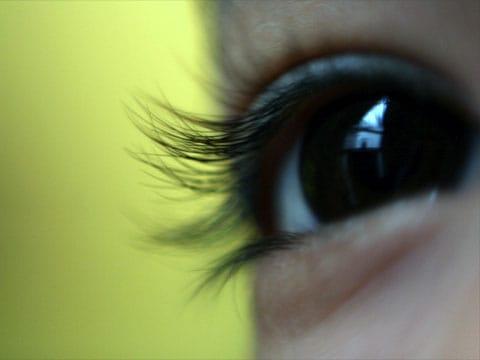 Sítnice (lat. retina) je vnitřní tenká vrstva oka obratlovců složená z nervových buněk. Hlavní funkce je snímání světelných signálů přicházejících na sítnici skrze čočku.