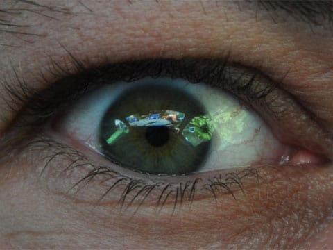 Slepá skvrna je místo na sítnici, kde zrakový nerv ústí do oční bulbu a ještě není rozvětven na jemná nervová vlákna opatřená elementy citlivými ke světlu. To znamená, že tam nejsou světločivé buňky. Objevil ji fyzik Edme Mariotte v roce 1668. Pobavil tím dvořany Ludvíka XIV. Postavil dva velmože dva metry od sebe a požádal je, aby se dívali jedním okem na jistý bod ležící trochu stranou. Pak se každému z nich zdálo, že jeho protějšek nemá hlavu. Člověk ji ale obyčejně nevnímá, neboť mozek slepé místo obrazu doplňuje.
