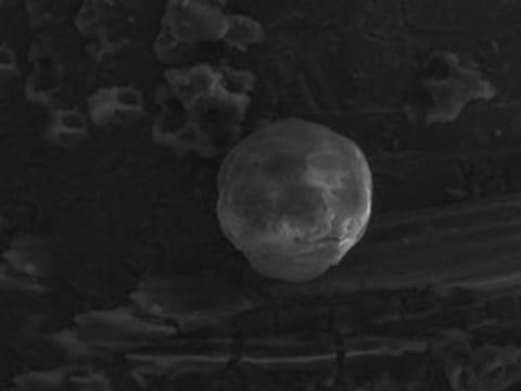 Tyto mikrosféry objevili vědci v geologických usazeninách v Kanadě, Španělsku, Dánsku a na Novém Zélandu.