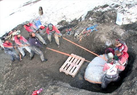 Uf, práce to vůbec není lehká: paleontologové vytahují zkamenělé ostatky z věčně zmrzlé půdy. Dr. Jorn Hurum je v popředí (postava ve fialovém svetru).