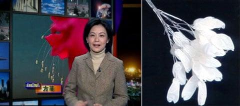 V září 2006 podávala informace o Udumbaru  New Tang Dynasty TV – čínská televizní společnost.